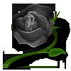 gift_image